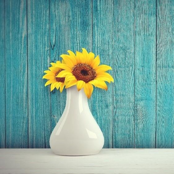 Sonnenblume in einer weißen Vase